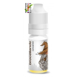 Concentré Brocéliande Solana 10ml TPD EU