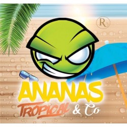 Concentré Ananas Tropical & Co Révolute 10 ml