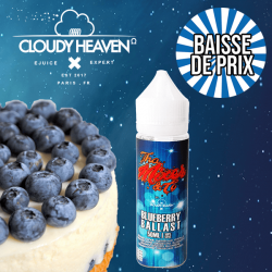10X Blueberry Ballast CLOUDY HEAVEN GF 50ml